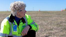 DFW Airport's Innovative Plan Prevents Bird Strikes