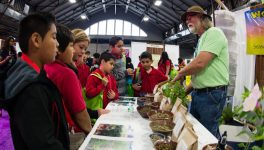 Here's What You Shouldn't Miss at Earth Day Texas This Weekend