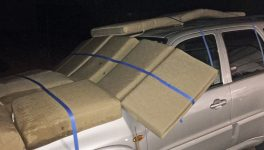 Threat of Hail Brings Out North Texans' Ingenuity