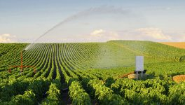 Smart Agriculture: Farms of the Future