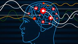 UTSW Researchers: Big Experiences Enhance Memory