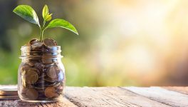 For Social Impact, Build Financial Sustainability into Your DNA