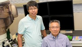 Researchers Seek Alternatives to Silicon Transistors