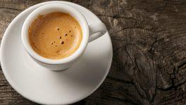 Martha Stewart Café to Open at Macy's