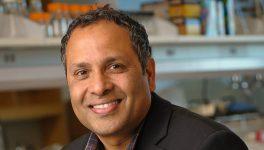 UT Southwestern Researcher Gets Prestigious NIH Grant