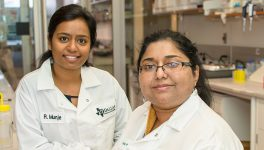 UTD Bioengineers' Device Monitors Glucose Through Sweat