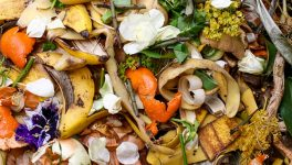 Cowboy Compost Works to Recycle Food Waste