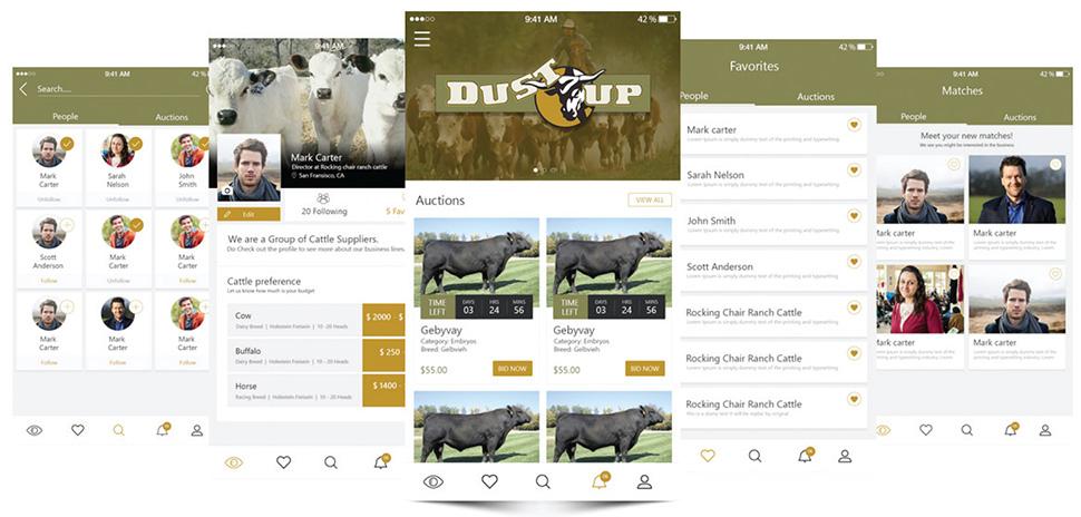 DustUp Dallas Startup