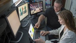 SMU Researchers, Gamers Partner on Cancer Research