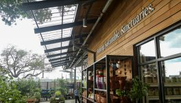 Dallas Innovates First Look: <br/>TreeHouse Unveils Dallas Store