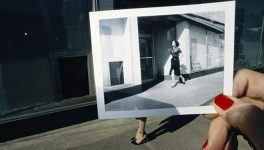 Amon Carter Exhibit is an </br>Ode to Polaroid Imaging Tech